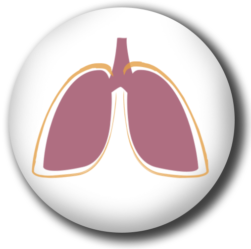 Real World Health Care Non-Small Cell Lung Cancer Series